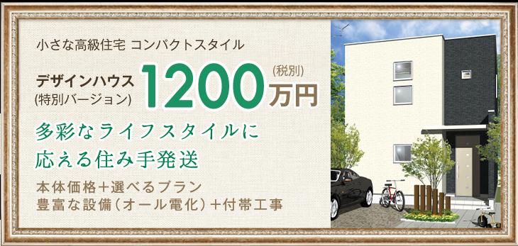 小さな高級住宅 コンパクトスタイル デザインハウス (特別バージョン)1200万円(税別)